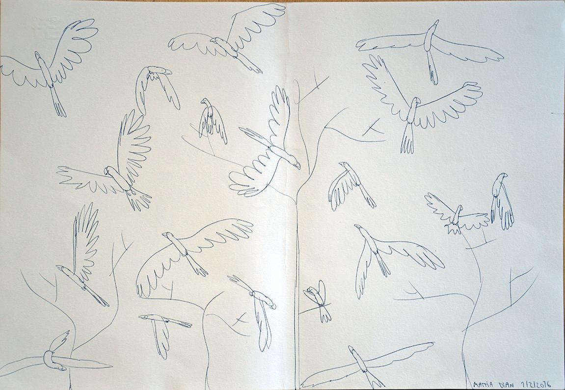 _0001_dian-uccelli