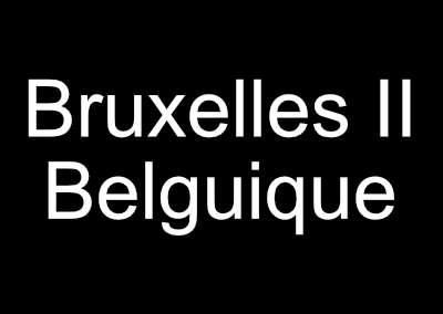 Le monde au singulier: Bruxelles Pipol 8