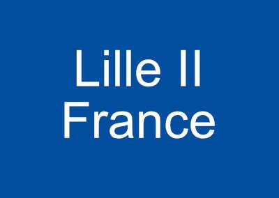 Le monde au singulier : L'Hotel de la Ville de Lille