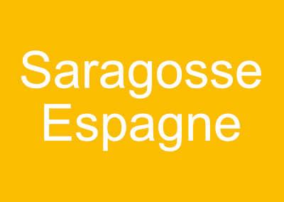 Le monde au singulier: Saragosse